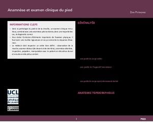 """""""Abord chirurgical et arthroscopique du pied et de la cheville"""" icon"""